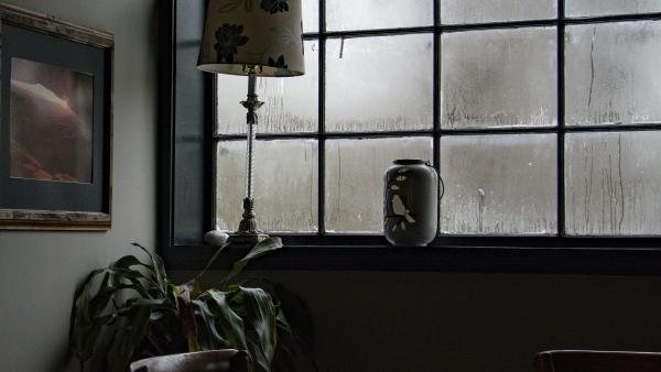 problemas de humedad