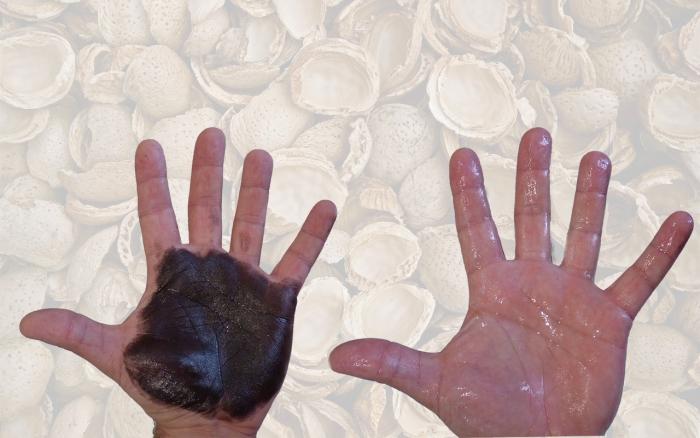 NEOCREM FORTE BIO Crema limpiamanos